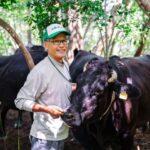 【ポツンと一軒家】鳥取県和牛『のびとファーム』と奥山俊二は繁殖農家とは?